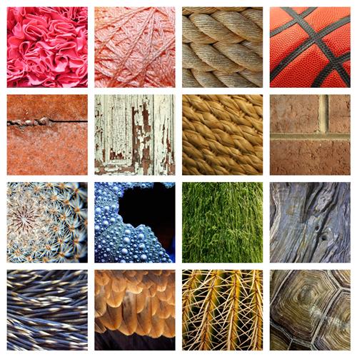 Gioacchini, Paul / Texture